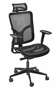 Danube Mesh Executive Task Chair